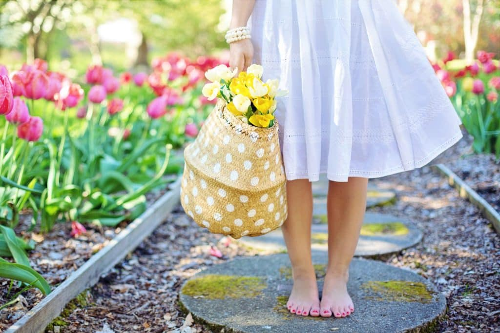 woman in blue dress holding a basket of yellow daffodils standing barefoot in a garden of pink tulips