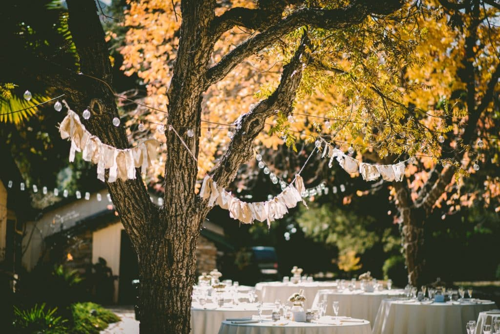 three wedding reception tables in a garden setting with a large tree overhanging the tables