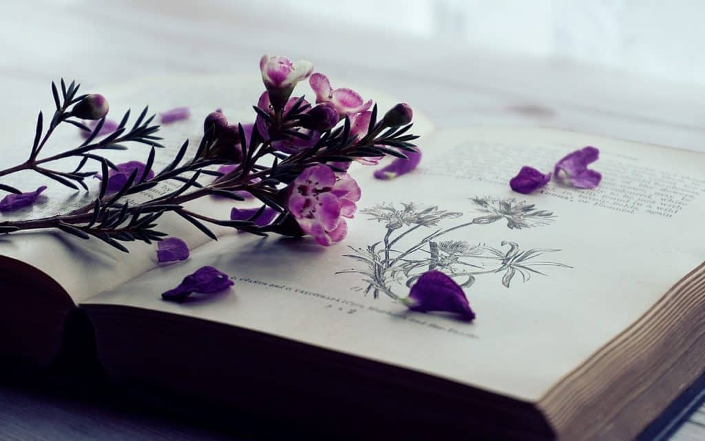 open book about botany with a bunch of purple flowers laying on top